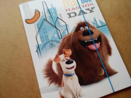 Teczka na rysunki A4 z gumką Pets Pies